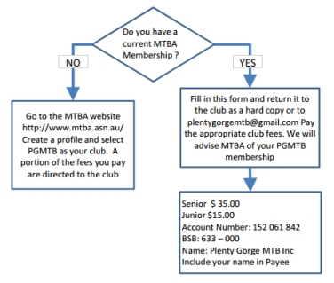 membership flow chart